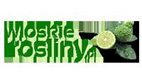 wloskie rosliny logo kot rabatowy